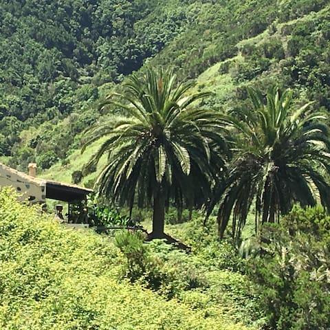 Casa Rural en Parque Nacional, excelentes vistas - Las Rosas - Casa