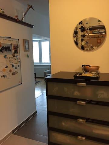 Cozy apartment in the city center - Žilina - 公寓