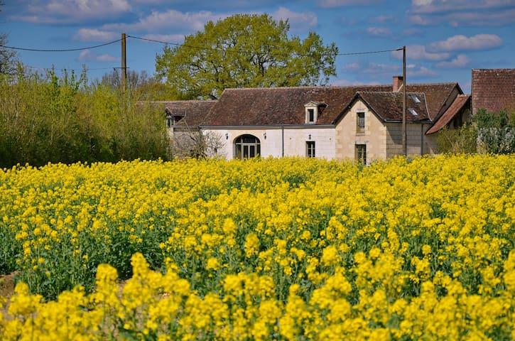 Ferme paisible entre champs et bois - Villedieu-le-Château - Ev