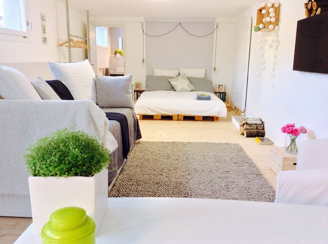 Calm spacious renovated unit, garden and parking - Grand-Lancy - Casa