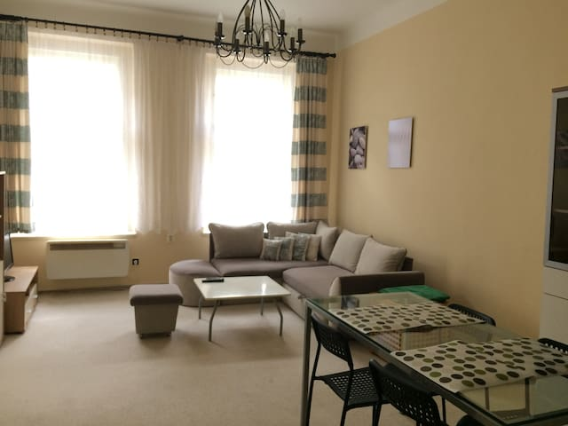 New renovated  52sq m flat in the city center - Praag - Appartement
