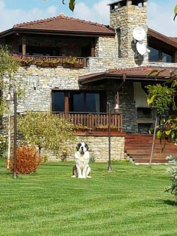 "Guest House ""DiNi"" - Tabashka - Ev"
