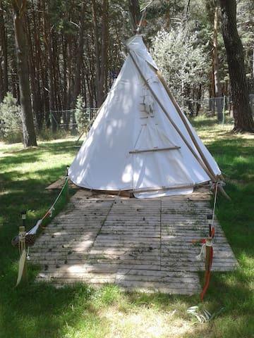 Tipi Apache Monte Royal - Aguilar de Campoo