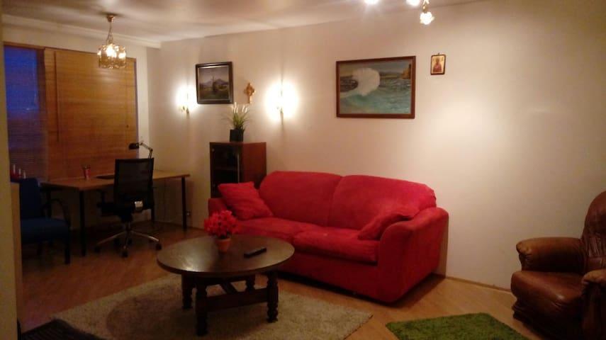 Nice apartment in Thorlakshöfn (49 km from REK) - Thorlakshofn