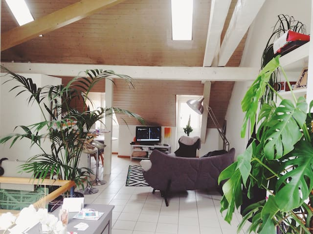 Cosy flat Morges - Morges - 公寓
