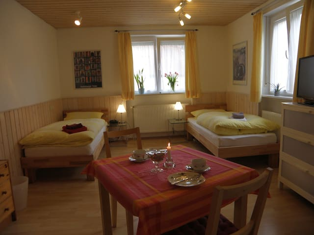 "Guest apartment ""A place for two"" - Heidelberg - Rumah"