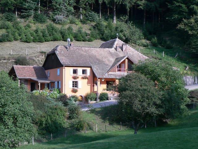 Chez Florent - Fouchy - Appartement