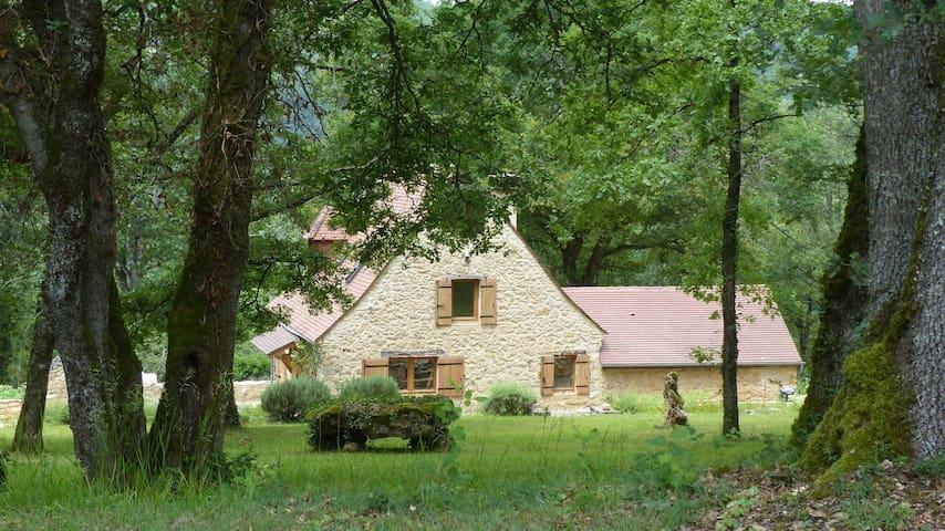 """""""La Forestière"""" Indépendante. En vallée de Vézère. - Saint-Léon-sur-Vézère - Casa"""