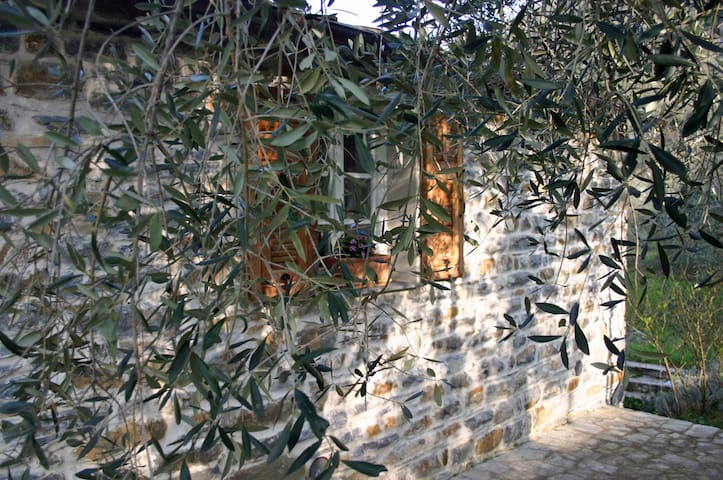 Holidays under the olive trees  - Casa Progallo - Montalto Ligure - 一軒家