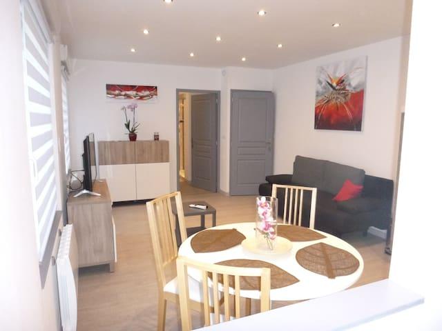 Appartement 42 m2 tout equipé - Neuf-Brisach - Leilighet