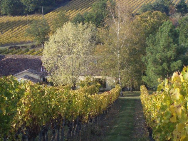 stone cabin in a vineyard - Pomport - Kulübe