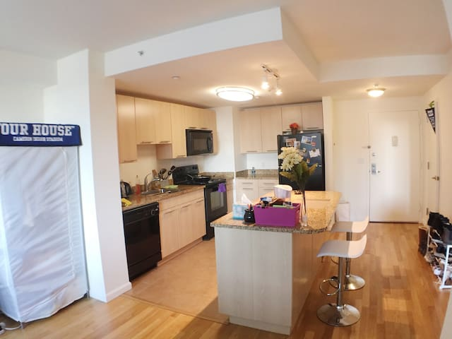 Luxury 1BR APT w/ 1 queen size bed and 1 airbed - White Plains - Appartement
