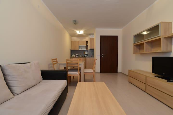 Comfortable 1 bedroom apartment near lift - Borovets - Mobilyalı daire