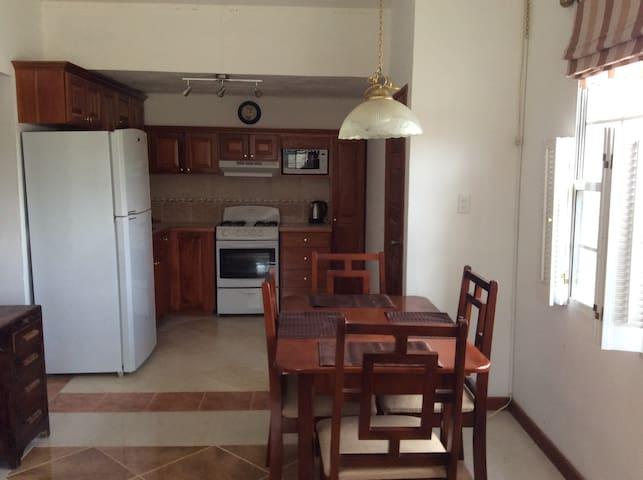 Watson Rental. Private one bedroom apartment. - Belmopan - Huoneisto