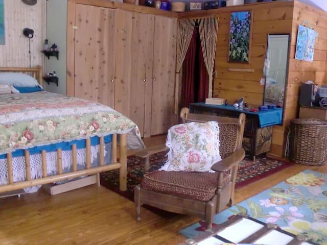 Adirondack Mountain Cabin - Vermontville - Cabin