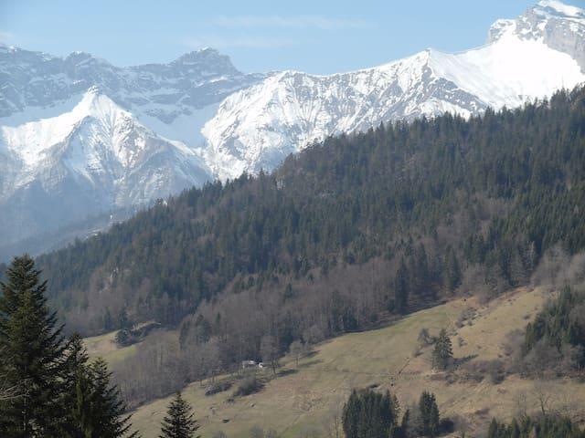 Ferme d'alpage rénovée - Le Bouchet-Mont-Charvin - Alpstuga