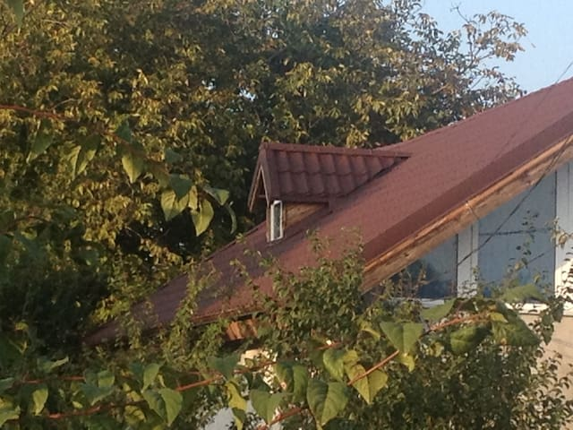 single house on Tancabesti, - Tâncăbești