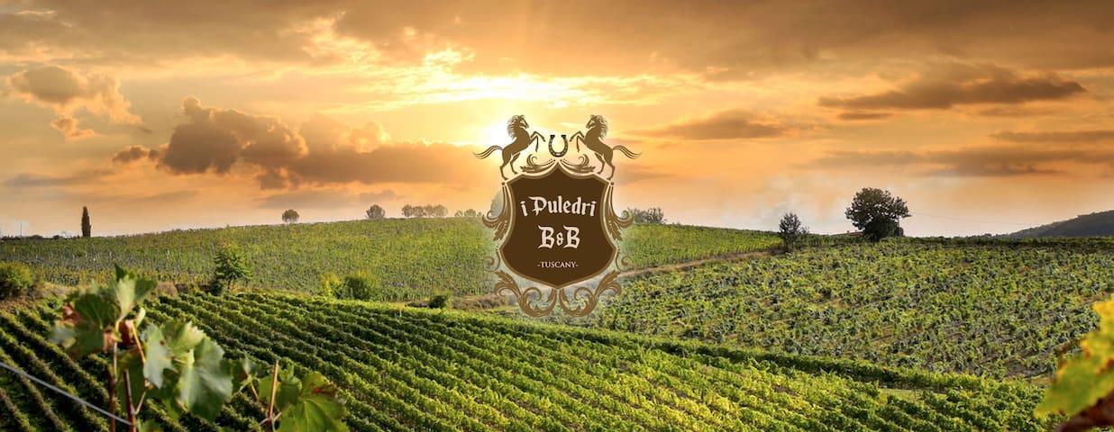 I Puledri B&B Tuscany - Paterno - 家庭式旅館