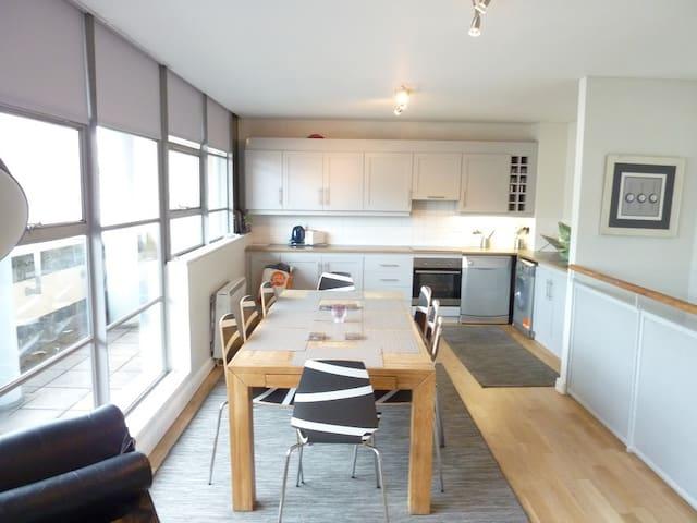 Double Room in Temple Bar Penthouse - Dublin - Huoneisto