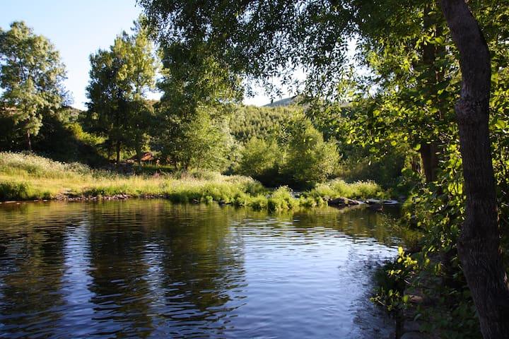 Retiro da Arminda - Turismo Rural - Quarto Lilas - Canedo - 家庭式旅館