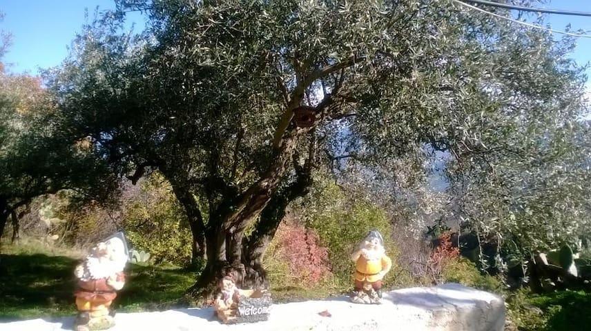 Casetta nel Parco delle Madonie - Castelbuono - Chalet