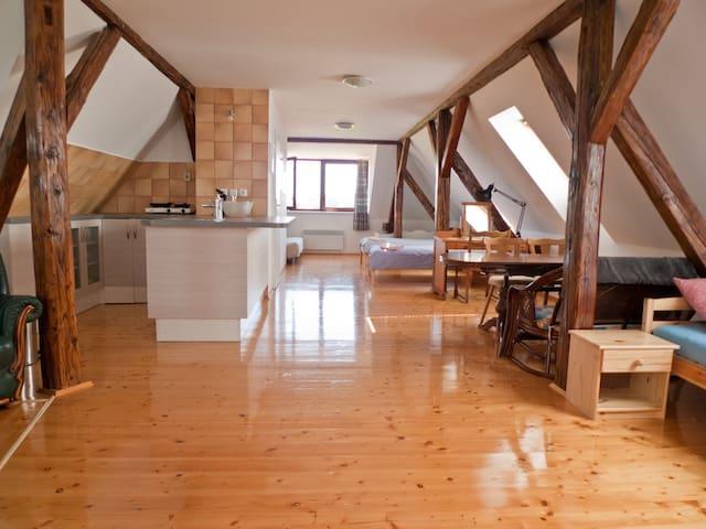 Spacious 60m² room in nice Lednice - Unesco Castle - Lednice - Casa