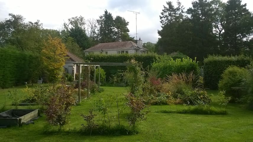 Cottage on 1 acre of ground - Naas - Ev