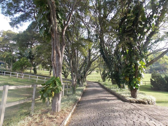 Tranquilidade, Conforto e Natureza Exuberante - Amparo - Srub