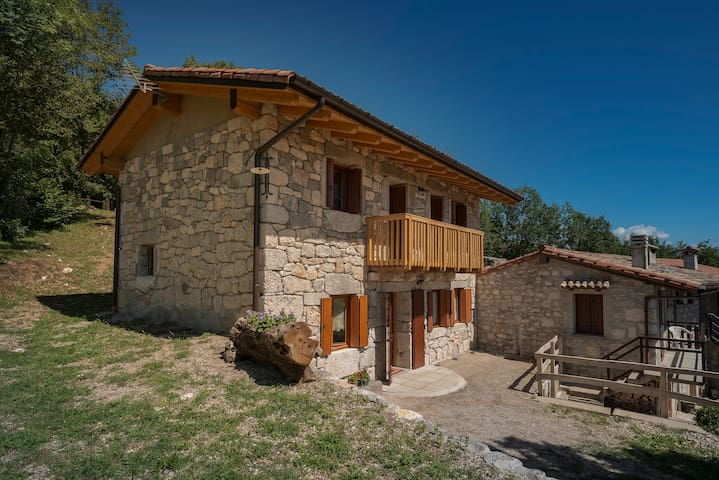 House Laure -where the Griffons fly - Forgaria Nel Friuli - House