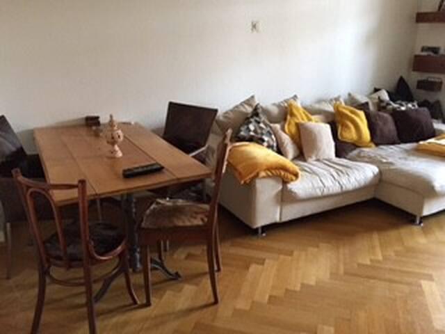 Gemütliche ,zentrale Stadtwohnung - Basilea - Departamento