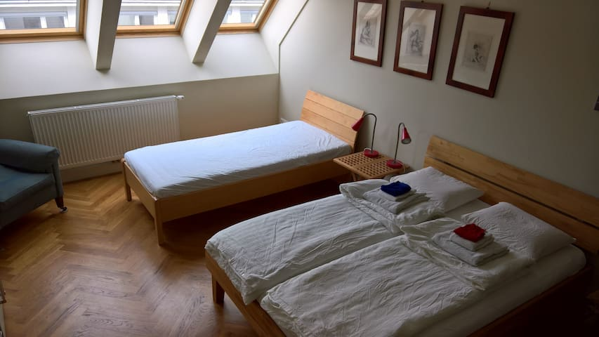 Room with private bathroom and roof terrace - Wien - Apartment