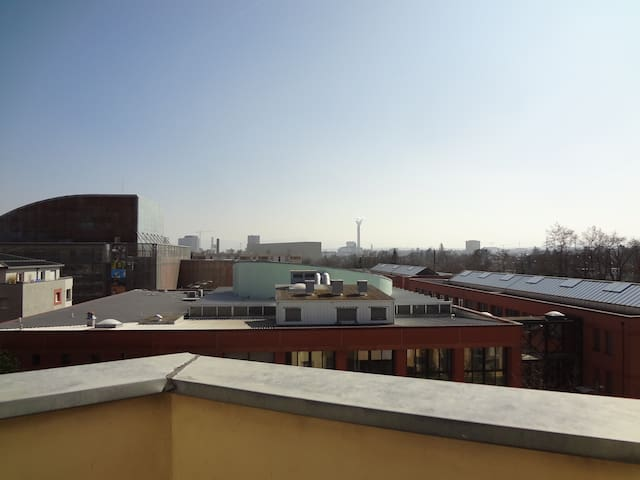 STUDIO 39m2 CENTER ST LOUIS BASEL WORLD IBIS HOTEL - Saint-Louis