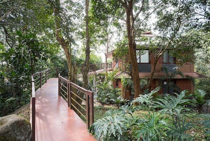 Luxury pool villa in misty Vythiri, Wayanad - Vythiri - Villa