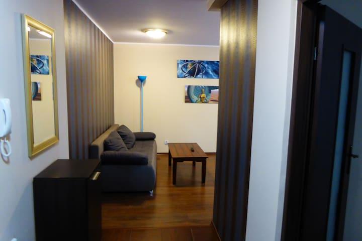 APARTAMENT BLUE LOFT - Białystok - Appartement