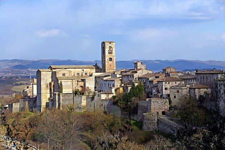 ANTICO APPARTAMENTO IMMERSO NELLA STORIA - Colle di Val d'Elsa - Lägenhet