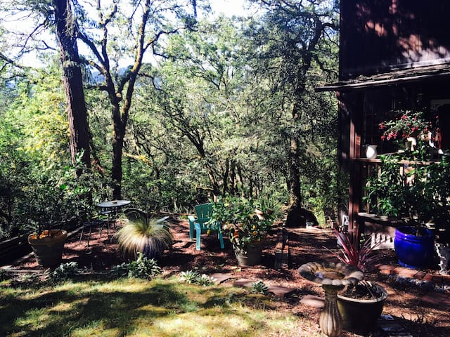 Artist's Retreat in the Wine Country - Forestville