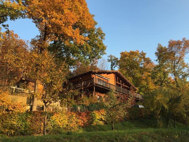 Holzhaus am Waldrand, Eifel, Wandern & Reiten - Schalkenbach - Apartament