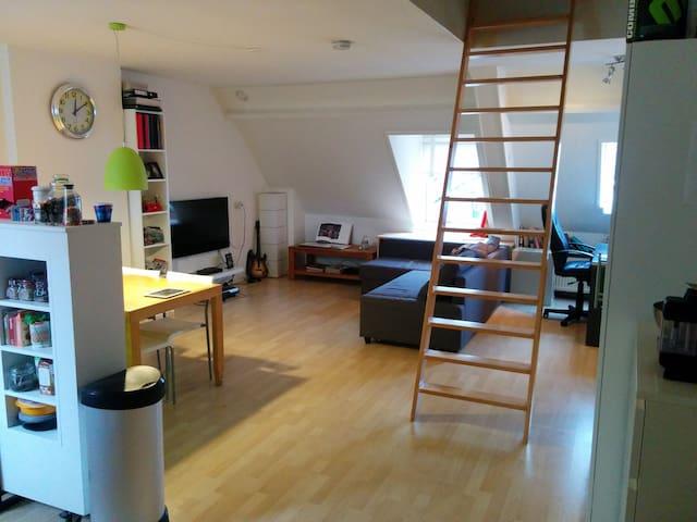 Apartment at the most perfect location of Arnhem - Arnhem - Lägenhet