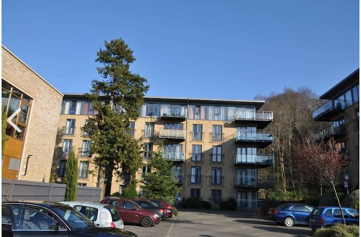 Large and modern two bedrooms apartment in Bray - Bray - Daire