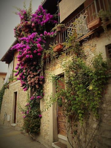 app.to vacanze La Bouganvillea - Manerba del Garda - Lägenhet