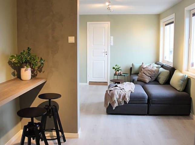 City view studio apartment - Alesund - Appartement