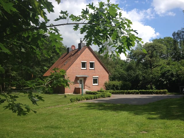 Großes Ferienhaus am See - Bispingen - Дом