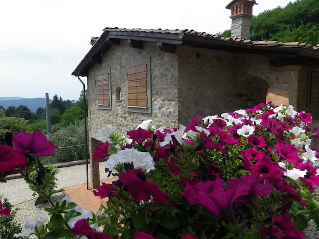 Hilltop  apartment :a steep road, a stunning view! - Pescaglia - Daire