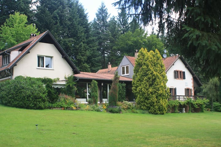 Luxury charming mansion in the middle of forest - Dambach - 別荘