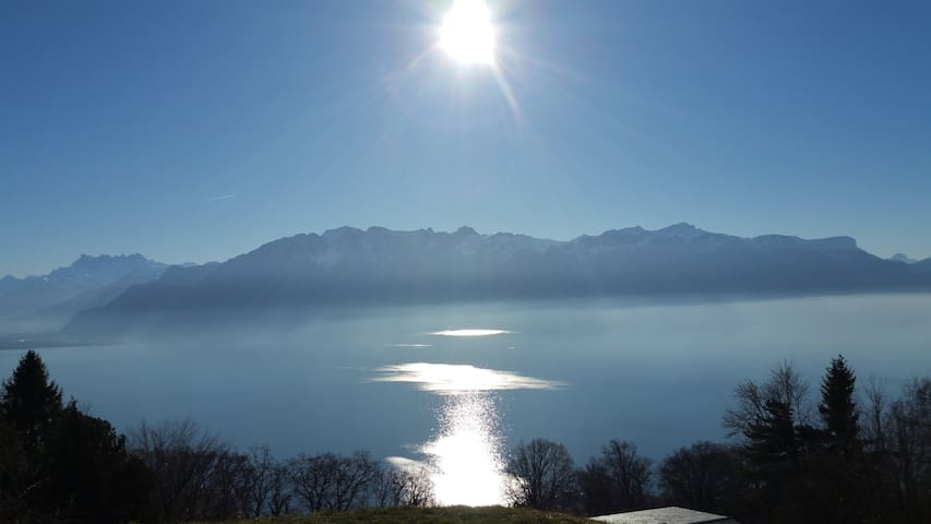 Breath taking views in authentic Swiss setting - Chardonne - Apartemen