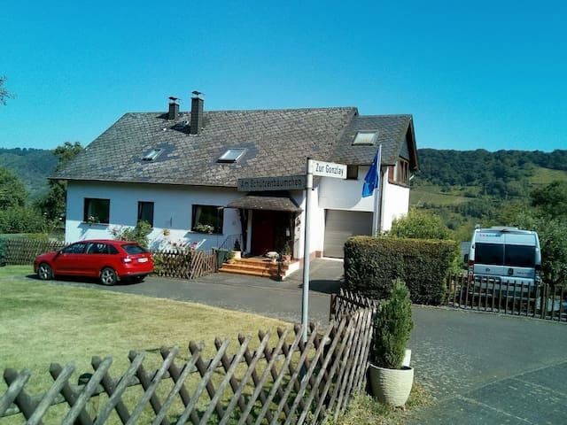 Quiet holiday flat with view of Mosel vineyards - Traben-Trarbach - Leilighet
