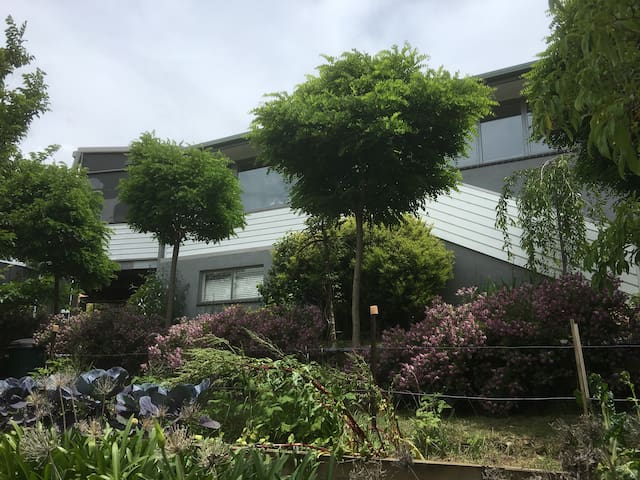 Self Contained - Fantastic Location - Golden Point - Daire