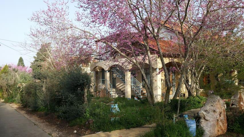 Center of Mistic Galilee - מרכז שקט-התבוננות בגליל - Shekhanya - Diğer