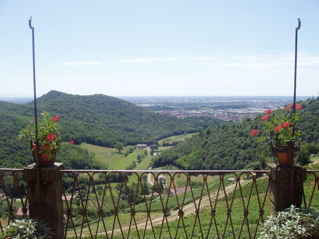 Relax in tenuta Frizzoni - Torre De' Roveri - Villa