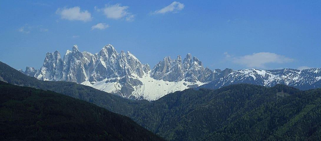 Agriturismo tranquillo in montagna - Bressanone - Condo